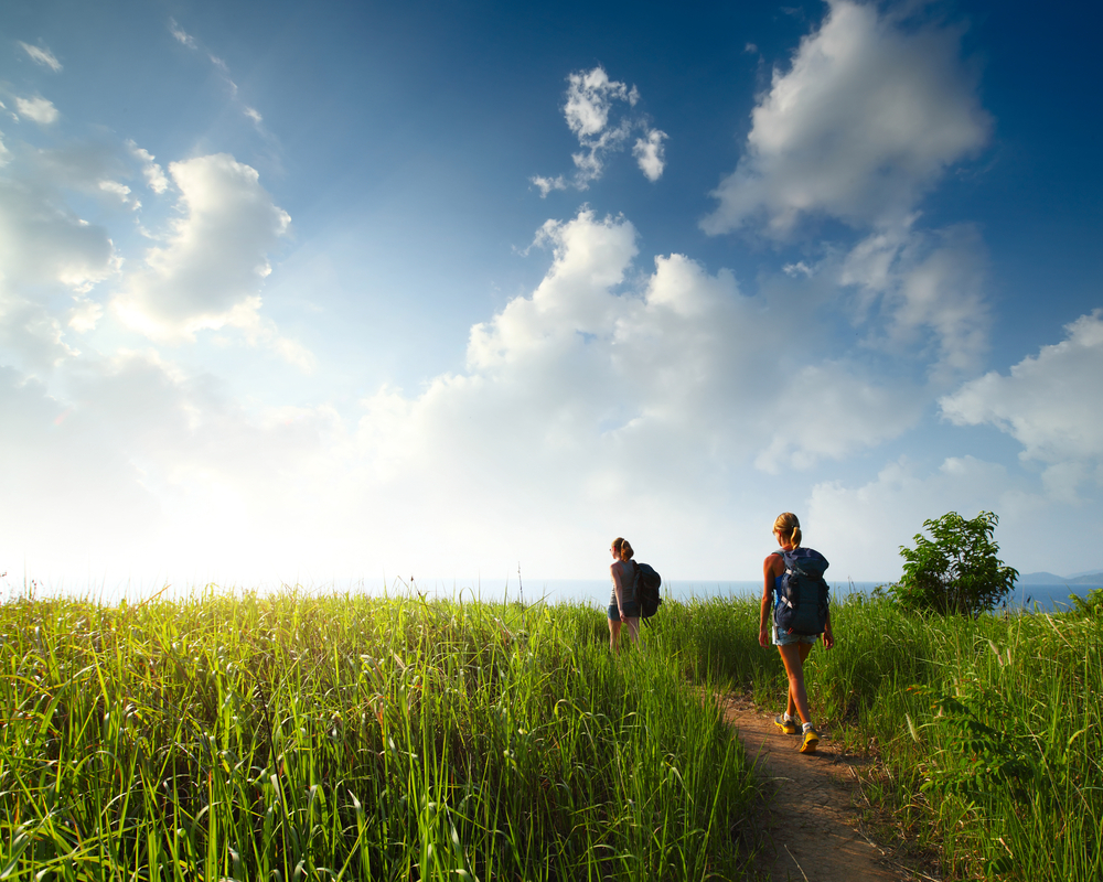 Hikers with backpacks walking through a meadow