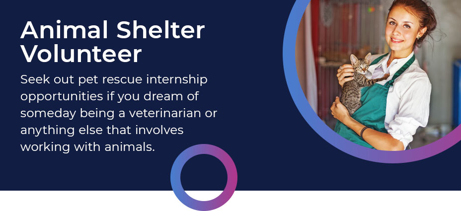 animal shelter volunteer quote