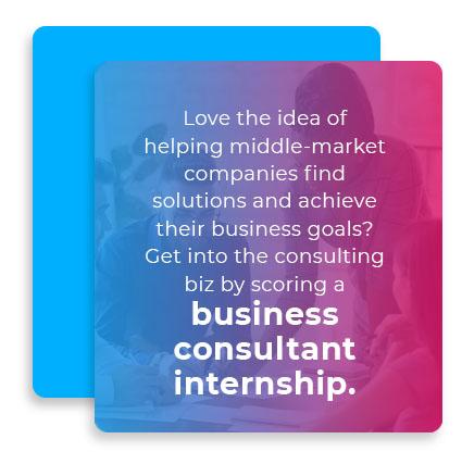 business consultant internship graphic